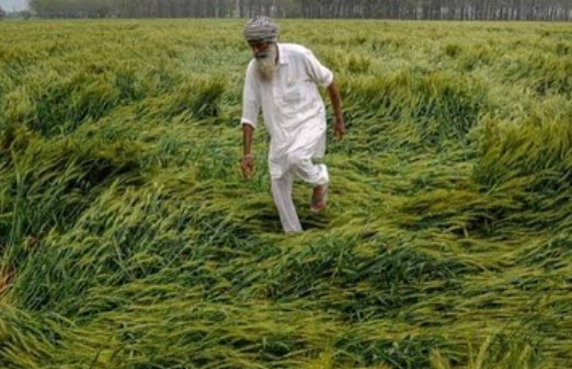 Know It All About Why The Farmers Of India Are Protesting
