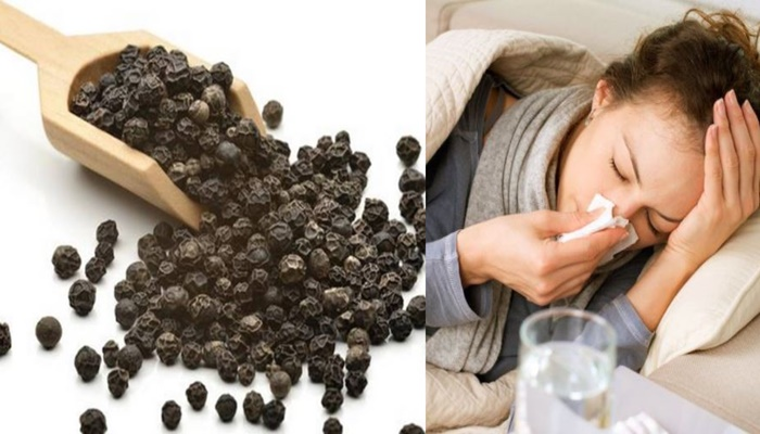 Health And Fitness : Know Healthy Beneifits Of Black Pepper