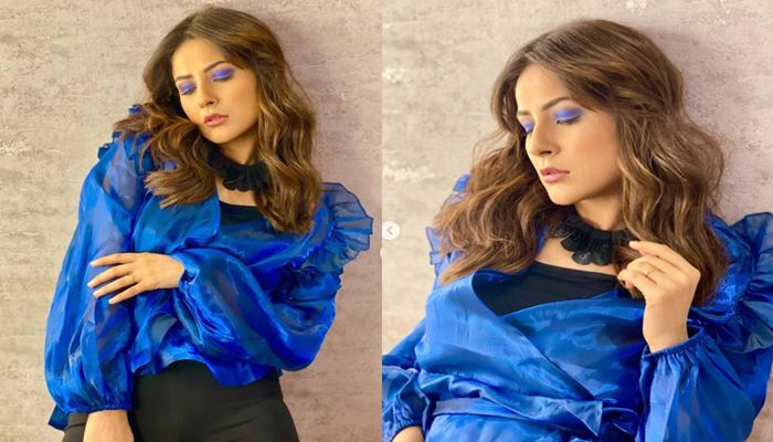 shehnaaz gill shared her new images