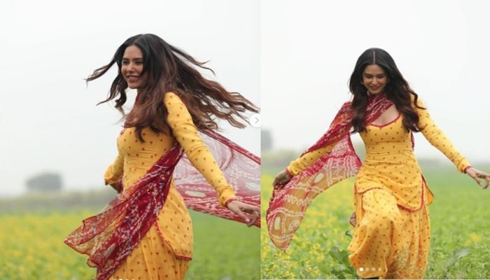 sonam bajwa shared her new pictures with fans-min